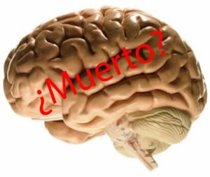 Cerebro - Muerte Cerebral_edited-2